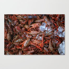 Crawfish on Ice Canvas Print