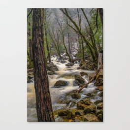 Bridalveil Creek, Yosemite National Park is swollen with snowmelt runoff on an early Spring morning Canvas Print