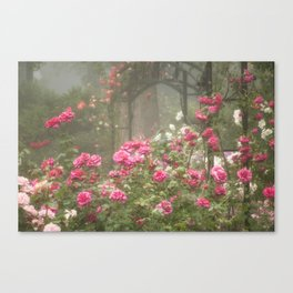 Blooms In Fog IV Canvas Print