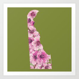 Delaware in Flowers Art Print