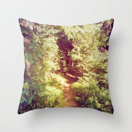Come to the Secret Place Throw Pillow