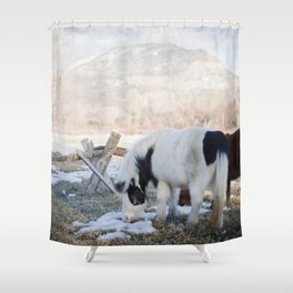 mini horses and a view Shower Curtain