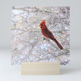 Red Cardinal Along the Salt River Mini Art Print