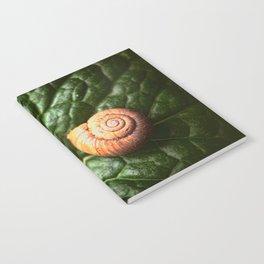 The Little Sleeping Snail Notebook