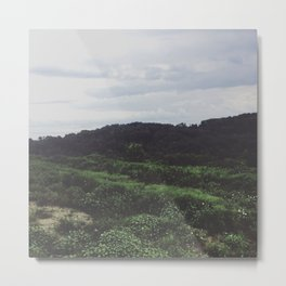 forest in the hills Metal Print