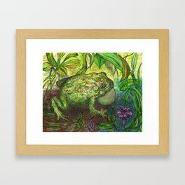 Rain Forest Toad Framed Art Print