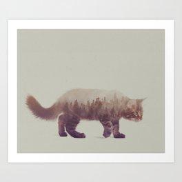 Cat: Maine Coon II Art Print