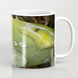 Raindrops on a green leaf Coffee Mug