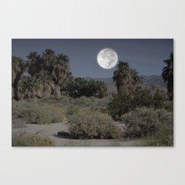 Desert Moonlight Scene Coachella Preserve Canvas Print