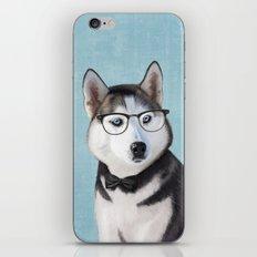 Mr Husky iPhone & iPod Skin