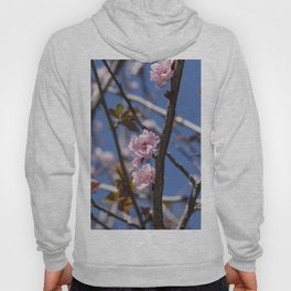 Branches of flowering Plum Hoody