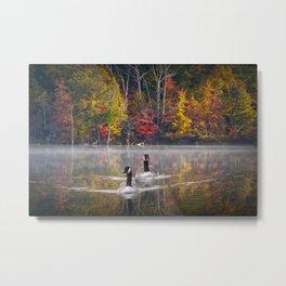 Two Canada Geese swimming in Fall Metal Print