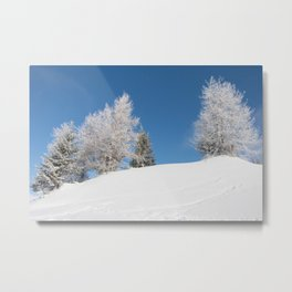 fir covered with snow Metal Print