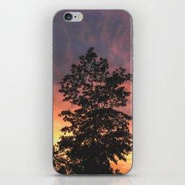 Explore to Create iPhone Skin