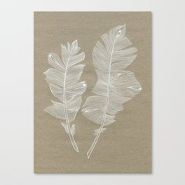 white feathers Canvas Print