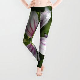 Zebra Mallow Flower Leggings