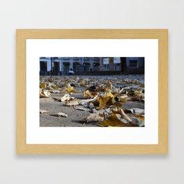 COLOR FLIGHT Framed Art Print