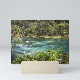 Rushing spring river Mini Art Print