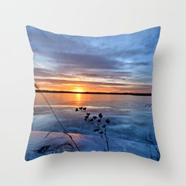 Late Autumn Sun Throw Pillow