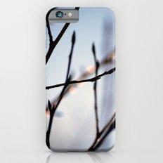 City of Aspen iPhone 6s Slim Case