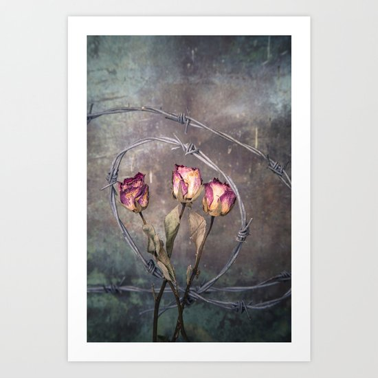Trapped Roses Art Print