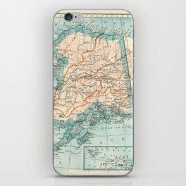 Vintage Alaska iPhone Skin