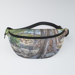 Cypress Fanny Pack