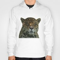 jaguar Hoodies featuring Jaguar by Sean Foreman