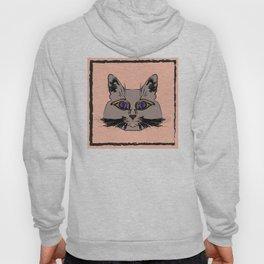 Cute gray cat. Muzzle cartoon cat in a box. Hoody