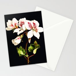Floral Night Blossoms Botanical Stationery Cards