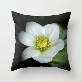 christmasrose on black -2- Throw Pillow