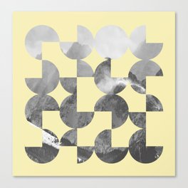 Quarter Quills 3 Canvas Print