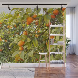 Fruits of Greece Wall Mural