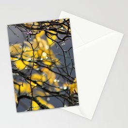 Yellow Birch Leaves, Raindrops, & Sunlight Stationery Cards