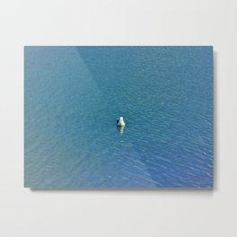 Sea Fish Metal Print