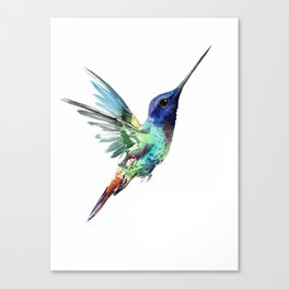 Flying Hummingbird flying bird, turquoise blue elegant bird minimalist design Canvas Print