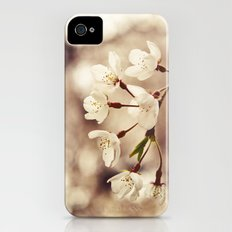 Weeping Cherry iPhone (4, 4s) Slim Case