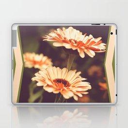 Salmon Colored Fields Laptop & iPad Skin