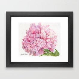 Pink Peony Floral Watercolor Detailed Botanical Garden Flower Realism Framed Art Print