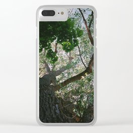 Consistant growth Clear iPhone Case