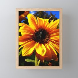 Sunflower Glow by Mandy Ramsey, Haines Alaska Framed Mini Art Print