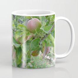 Fruitful Growth Coffee Mug