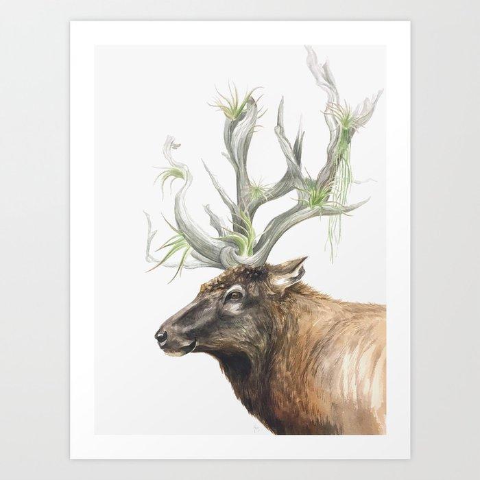 Air Plantlers Art Print