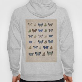 Vintage Hand Drawn Scientific Illustration Insects Butterfly Anatomy Colorful Wings Hoody