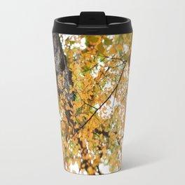 Fall Colors  //  Look Up Travel Mug