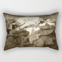 Mixed color Poinsettias 3 Antiqued Rectangular Pillow