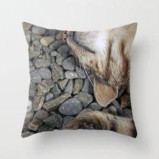 Ecstatic cat Throw Pillow