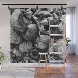 Coconut Shell Black and White Wall Mural