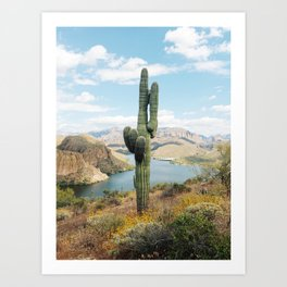Arizona Saguaro Art Print