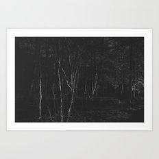 Dark Woodland Art Print